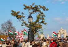 IEA reports on Hungary's Energy Strategy