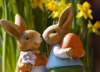 happy easter sunday 2018 bunny easter rabbit bunny couple